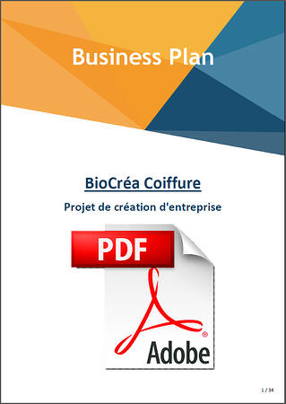 eic-0520-couv-business-plan