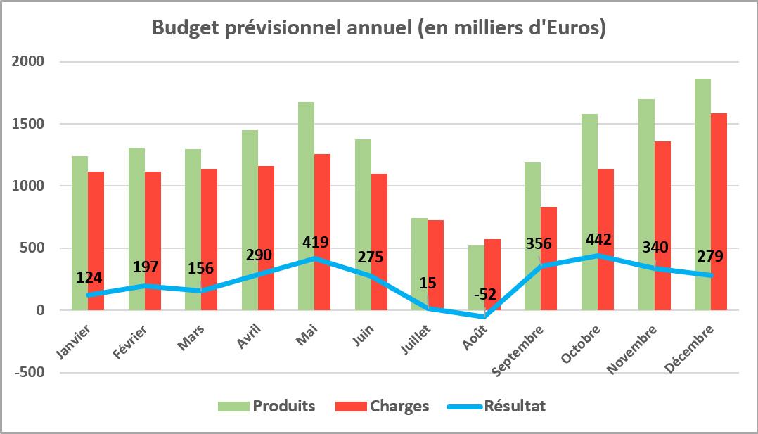 graphique budget previsionnel annuel